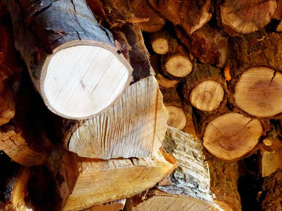 best wood for fire pit 3