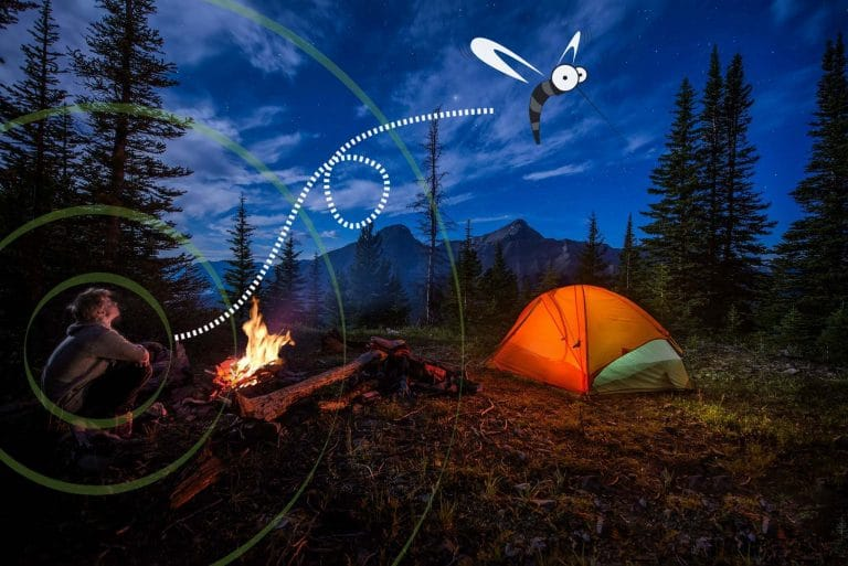 Mosquitoes camping